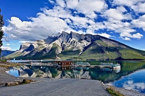 Základová fotografie zdarma na téma cestovní ruch, dobrodružství, dřevo, fjord