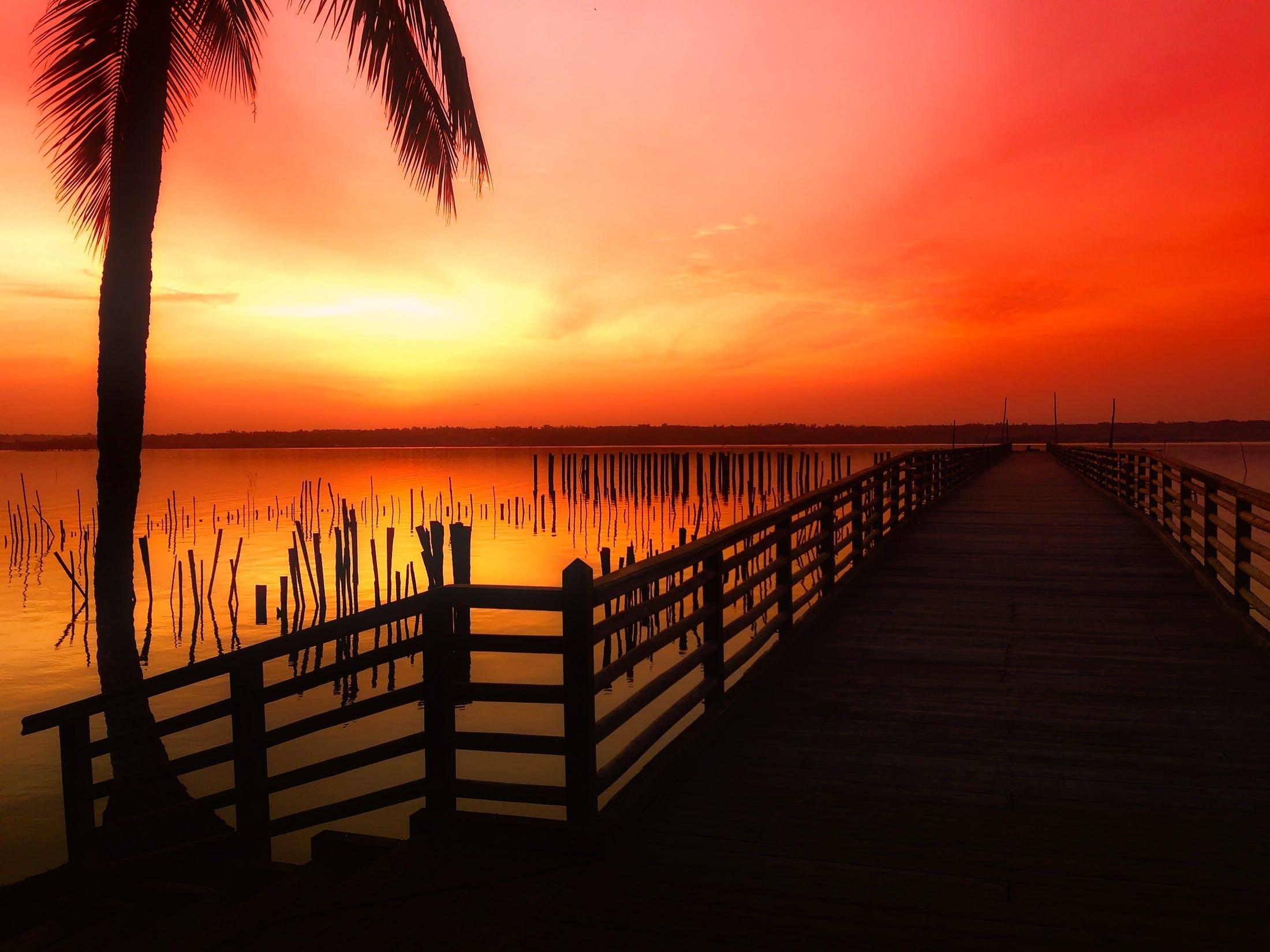Silhouette Photo of Dock in Golden Hour