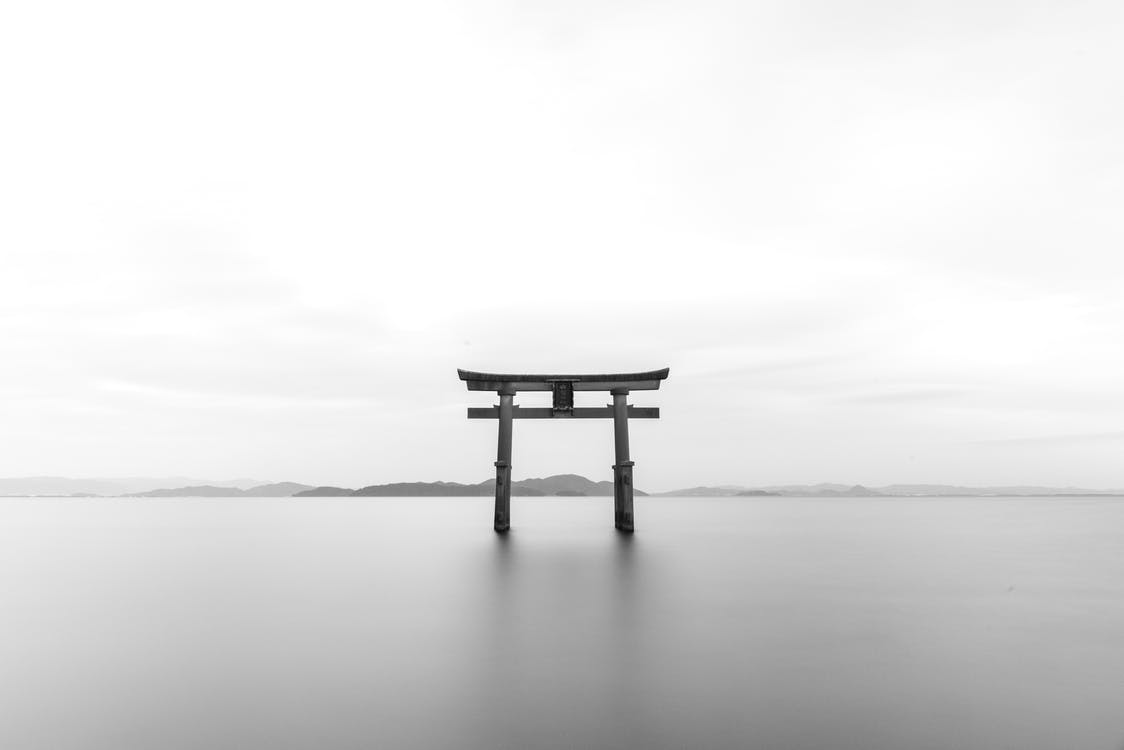 Pagoda in Gray Scale Shot
