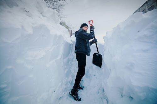 Ingyenes stockfotó tél témában