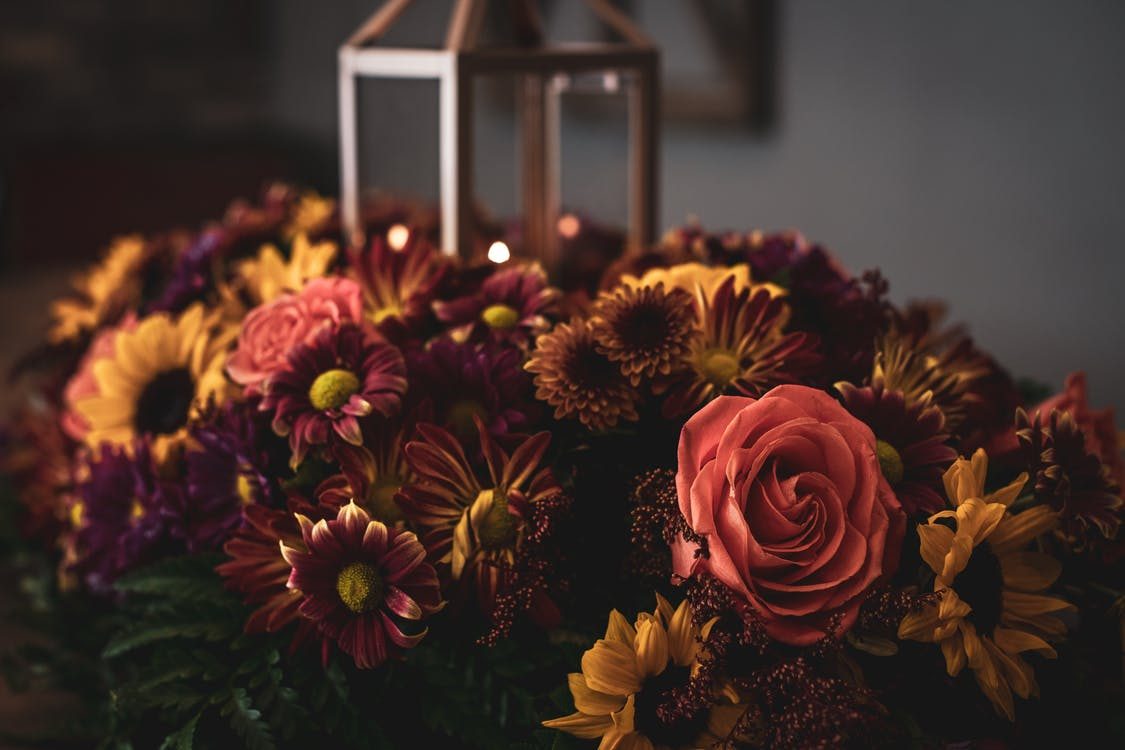Selective Focus Photography Flowers