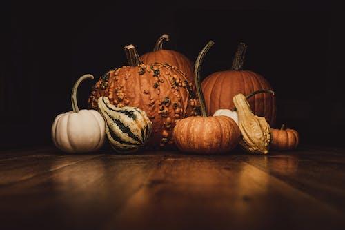 Ilmainen kuvapankkikuva tunnisteilla Halloween, kurpitsat, pullokurpitsa, ruoka