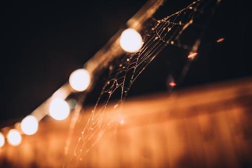 Бесплатное стоковое фото с висячие лампы, лампа гирлянды, паутина