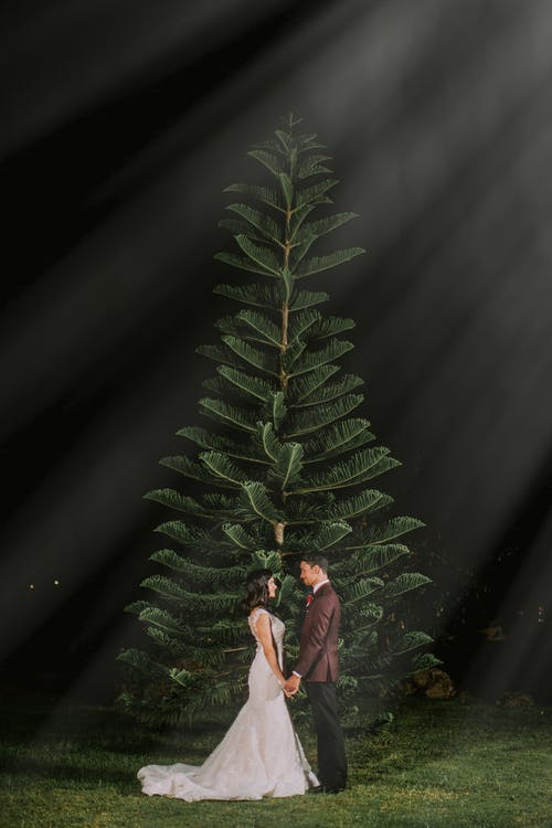 Man And Woman Standing Beside Tree
