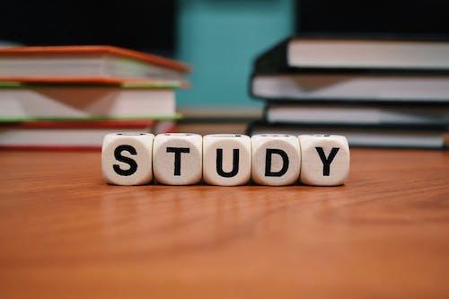 게임, 경기, 공부하다, 교육의 무료 스톡 사진