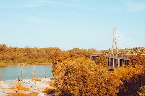 Бесплатное стоковое фото с варшава, мост, небо, осенние цвета