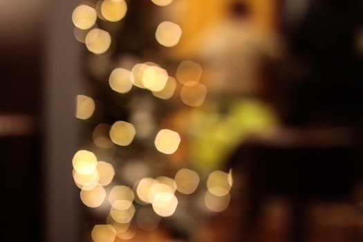 Free stock photo of blur, bokeh