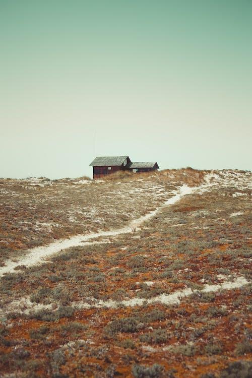 Immagine gratuita di ambiente, architettura, casa, collina