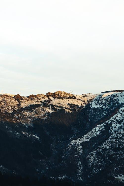Close-up of a Boulder