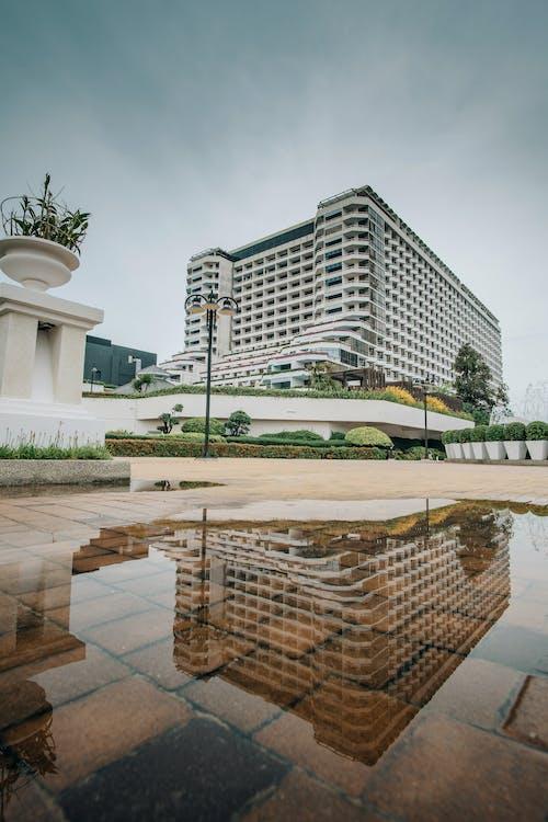 Foto profissional grátis de arquitetura, construção, poça, reflexão