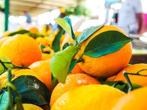 Foto d'estoc gratuïta de cítrics, deliciós, fruita, menjar