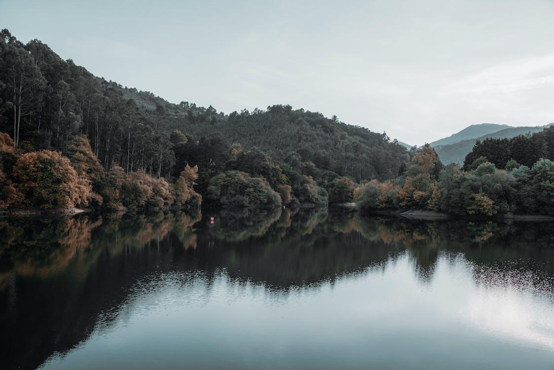 a orillas del lago, afuera, aire libre