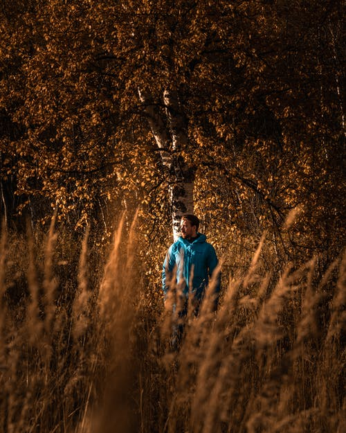 Photo Of man Standing Under Tree