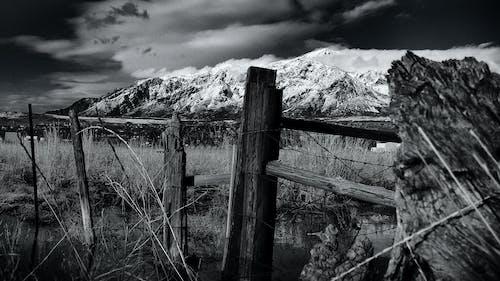 Free stock photo of black-and-whitem, blackandwhite, fence, field