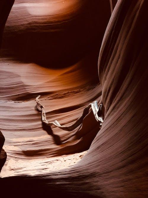 Foto profissional grátis de cânion entalhado, rochas vermelhas