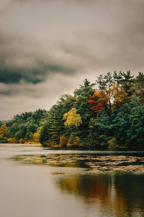 Ilmainen kuvapankkikuva tunnisteilla järvi, putoaminen, Syksy, taustakuva