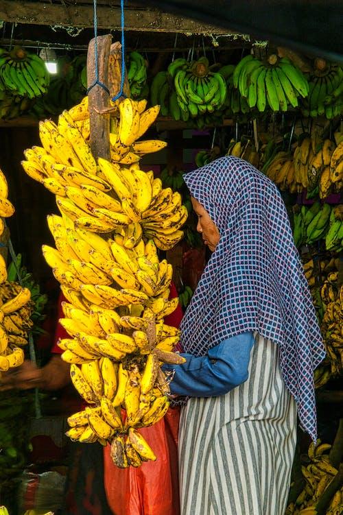 คลังภาพถ่ายฟรี ของ กล้วย, การขาย, ขาย, ตลาด