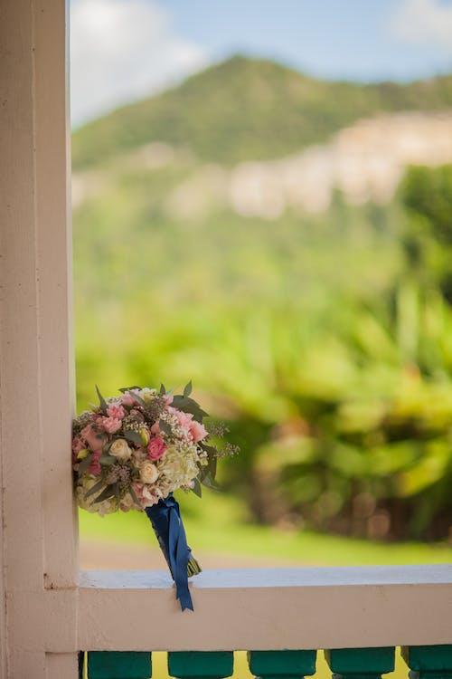 Kostnadsfri bild av blomma, blommor, bukett, flora