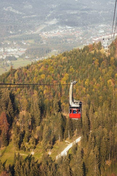 Alpi, alpin, anotimp