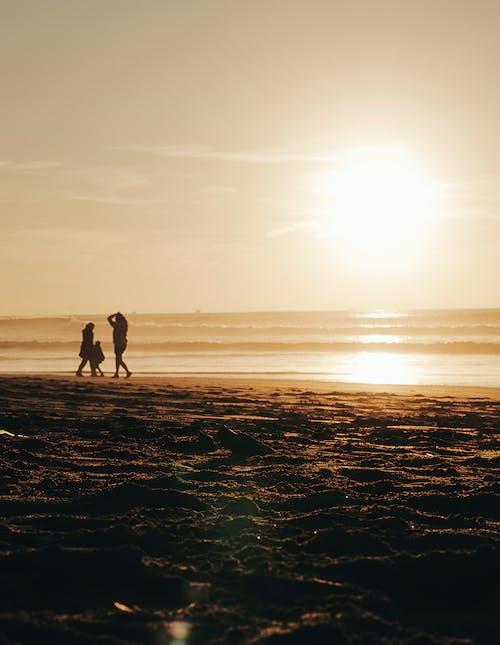 Gratis lagerfoto af barn, gylden time, silhouet, skygger