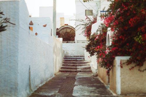 Základová fotografie zdarma na téma cestování, den, evropa, řecko