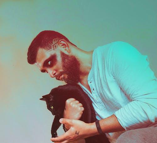 Free stock photo of beard, cat, viking