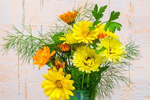 꽃다발, 정물, 정원 식물의 무료 스톡 사진