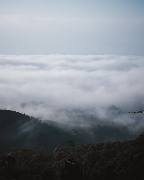Free stock photo of background image, beautiful landscape, cloud, cloud forest