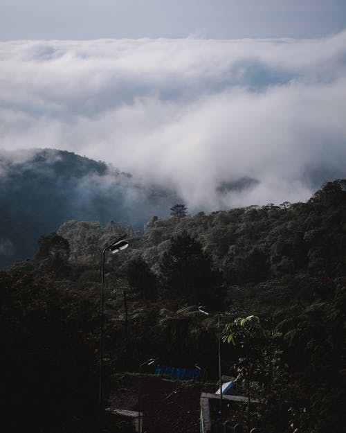 Free stock photo of beautiful landscape, blue mountains, cloud, cloud forest