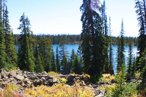 Imagine de stoc gratuită din lac, munte