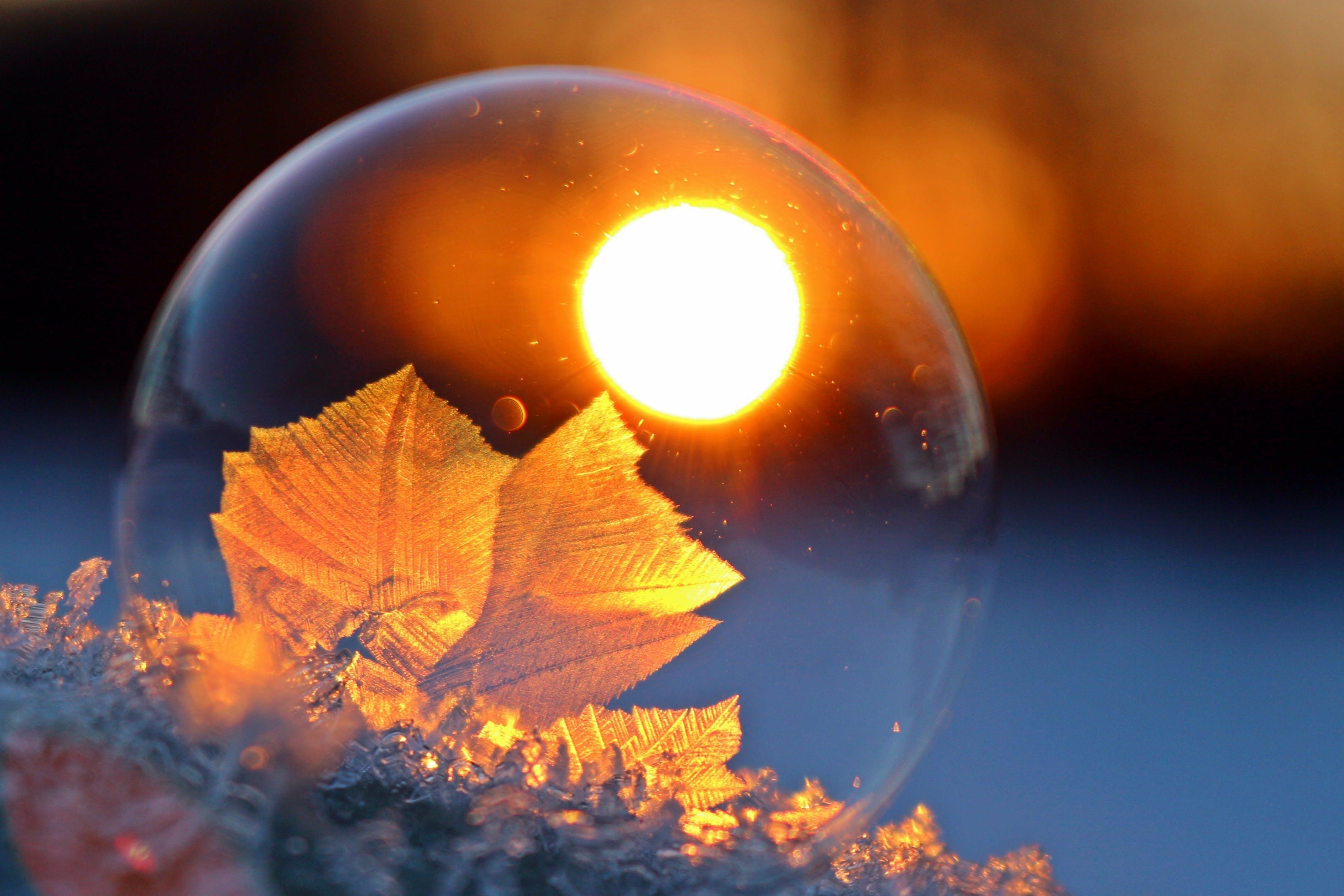 Free stock photo of sunset, winter, frozen, ball