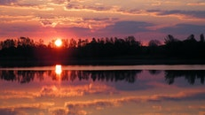 sunset, trees, twilight