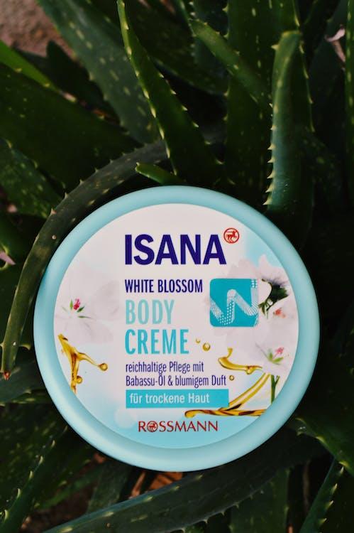 body cream, isana, skin care