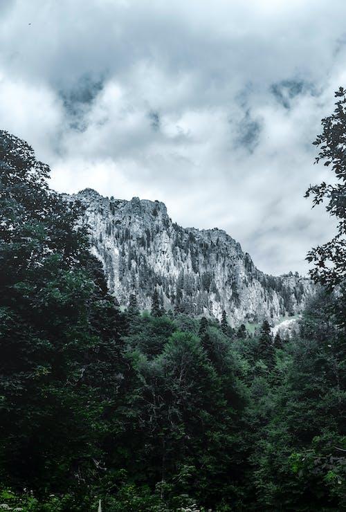 Foto stok gratis alam, awan, berawan, di luar rumah
