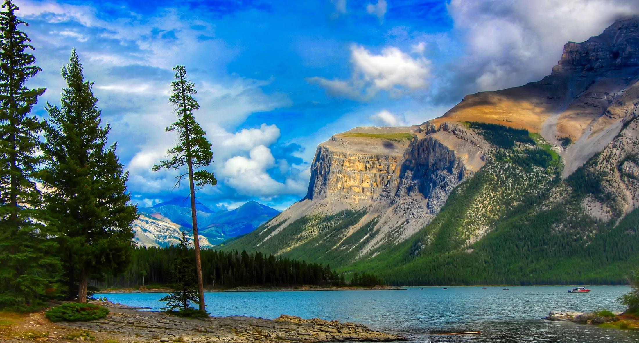 abenteuer, bäume, berg