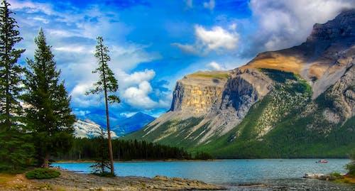 Foto profissional grátis de água, árvores, aventura, barco