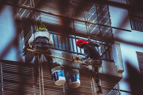 Fotos de stock gratuitas de pintor, pintura para pared, trabajadores, trabajando duro