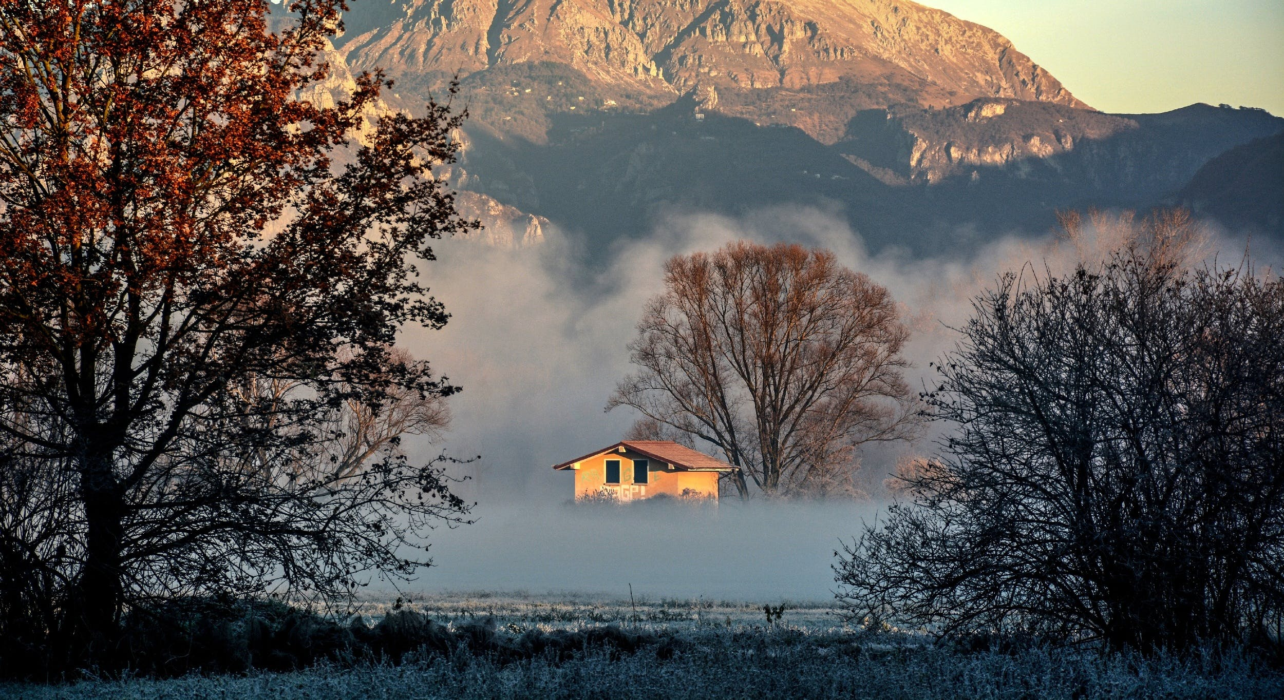 cold, dawn, fog