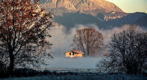 Kostnadsfri bild av berg, bergen, dimma, gryning