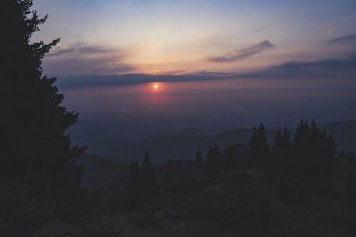 Foto profissional grátis de árvores, céu, montanhas, sol