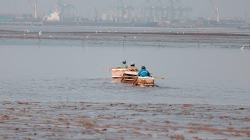 Free stock photo of Aditya, beach, beauty in nature, boat