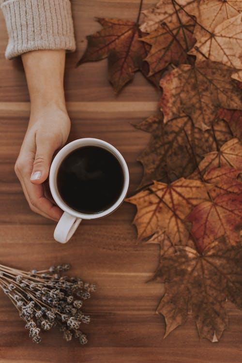 Ilmainen kuvapankkikuva tunnisteilla hiilihapotettu juoma, juoma, kahvi, käsi