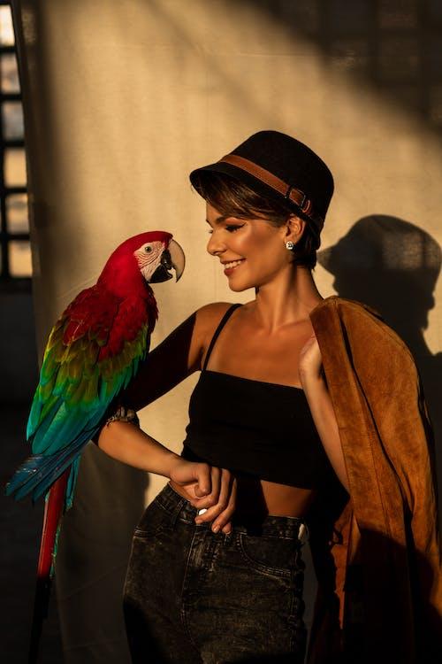 Guacamaya Roja En El Brazo De La Mujer, bird talk
