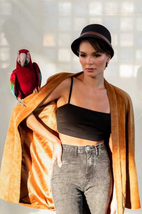 Stylish serious woman with colorful parrot on shoulder