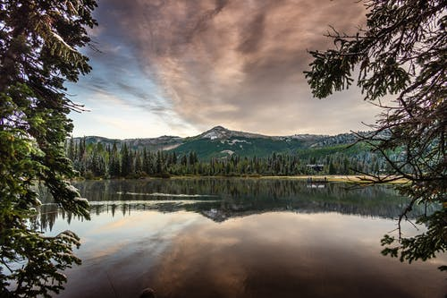 Mountain and Pine Trees Surrounding a Body of Water