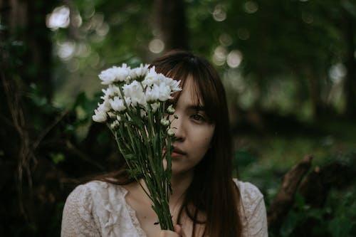 คลังภาพถ่ายฟรี ของ กลีบดอก, ก้านดอก, การมอง, ความชัดลึก