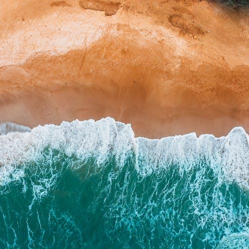 Free stock photo of blue ocean, ocean