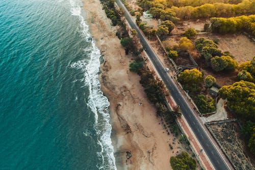 Foto profissional grátis de aerofotografia, água, árvores, beira-mar