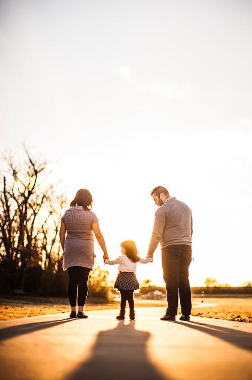 가족, 걷고 있는, 골든 아워, 단란함의 무료 스톡 사진
