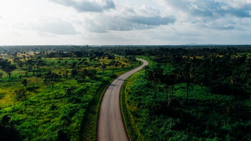 Aerial Photo of Road In The Midst Of  Lush Vegetation Of The Countryside
